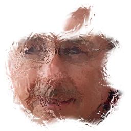 tampaappleman