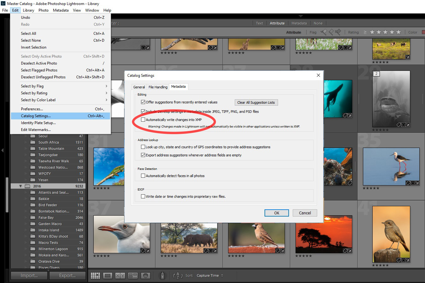 Automatically write changes to XMP in Adobe Lightroom