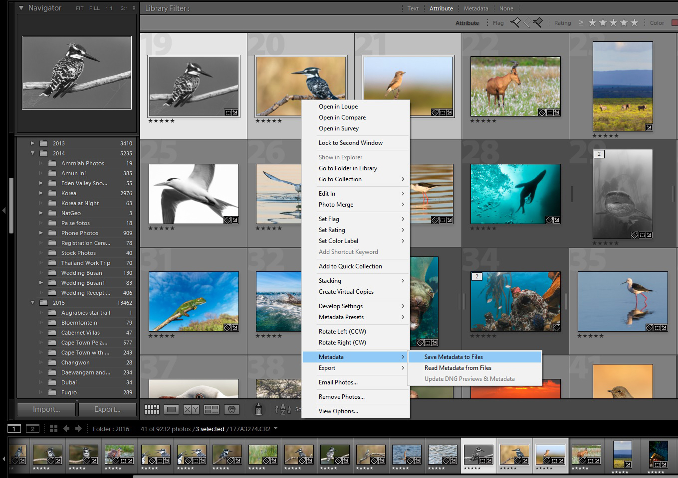 Manually save metadata to file in Adobe Lightroom